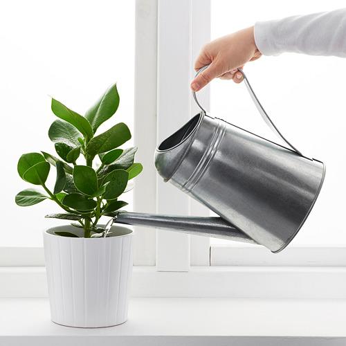 SOCKER - penyiram tanaman, dalam/luar ruang/galvanis, 2.6 l   IKEA Indonesia - PE594691_S4