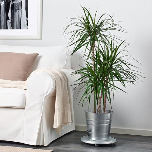 SOCKER - pot tanaman, dalam/luar ruang/galvanis, 24 cm | IKEA Indonesia - PE625526_S4