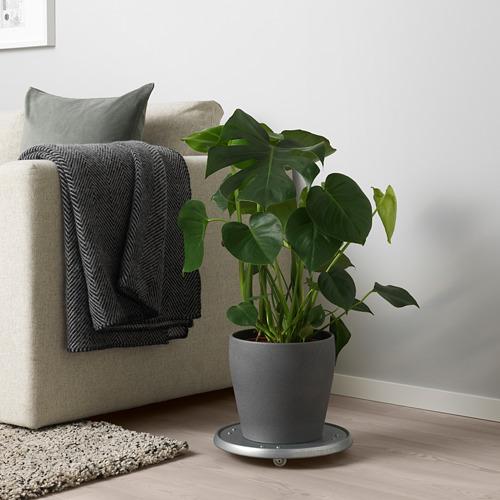 PERSILLADE pot tanaman