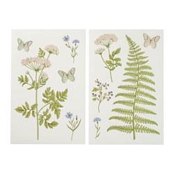 KINNARED - Stiker dekorasi, Pakis & bunga