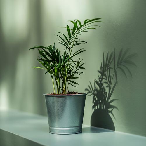 BINTJE - pot tanaman, galvanis, 9 cm | IKEA Indonesia - PE771564_S4