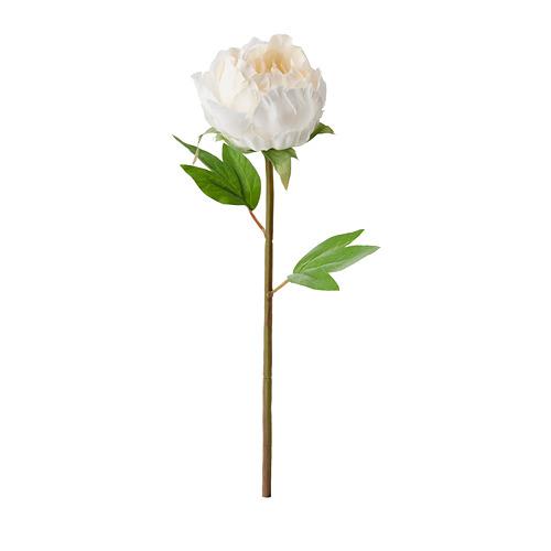 SMYCKA - bunga tiruan, Paeonia/putih, 30 cm | IKEA Indonesia - PE685423_S4