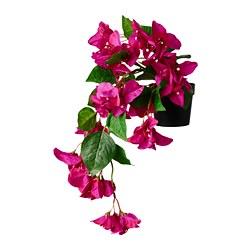 FEJKA - Tanaman tiruan dalam pot, dalam/luar ruang Bugenvil/digantung merah muda