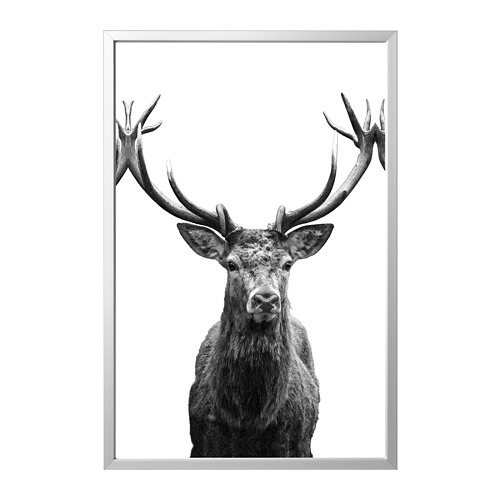 BJÖRKSTA picture with frame