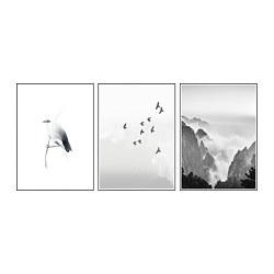 BILD - BILD, poster, Bird on twig, 50x70 cm