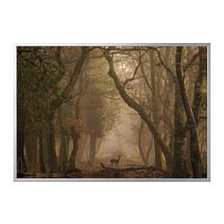 BJÖRKSTA - Gambar dengan bingkai, rusa/warna aluminium