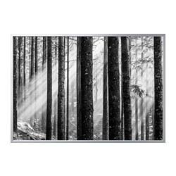 BJÖRKSTA - Gambar dengan bingkai, Sunbeams/warna aluminium