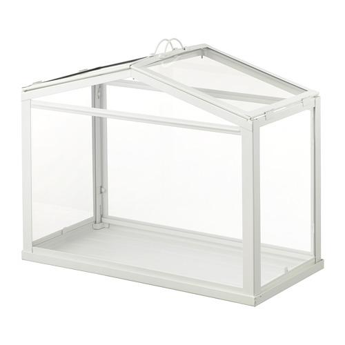 SOCKER rumah kaca