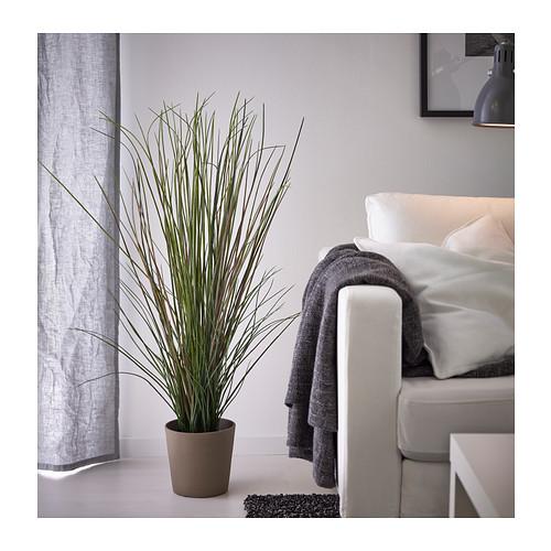 FEJKA - tanaman tiruan dalam pot, rumput, 17 cm   IKEA Indonesia - PE386546_S4