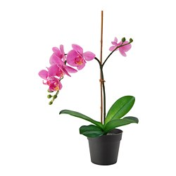FEJKA - Artificial potted plant, Orchid lilac