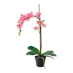 FEJKA - Artificial potted plant, Orchid pink