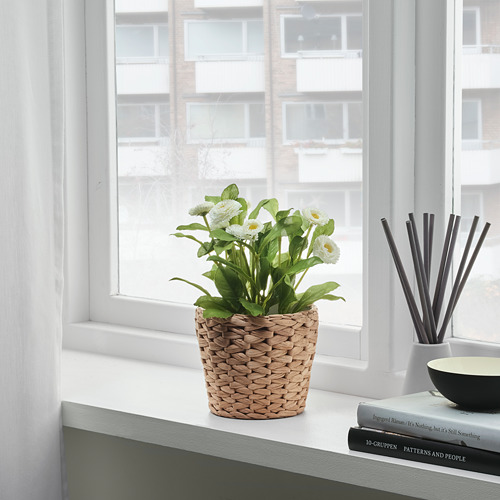 FRIDFULL pot tanaman