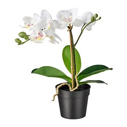 FEJKA - Artificial potted plant, Orchid white