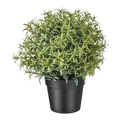 FEJKA - Artificial potted plant, Rosemary