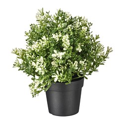 FEJKA - Artificial potted plant, thyme