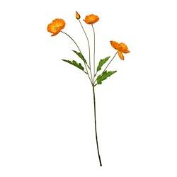 SMYCKA - SMYCKA, bunga tiruan, dalam/luar ruang/Popi oranye, 60 cm