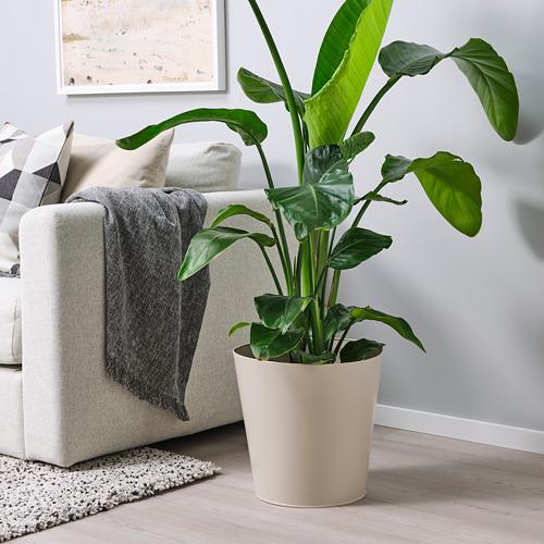 VITLÖK pot tanaman