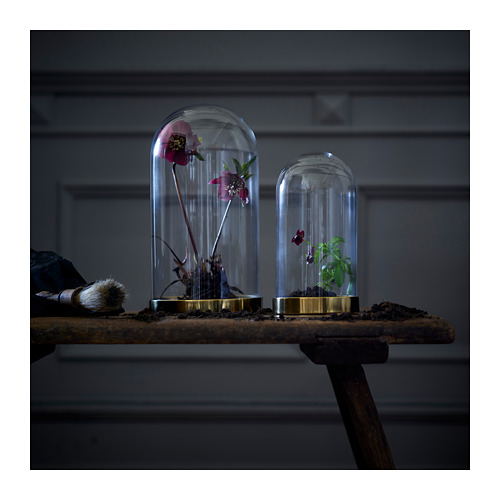 BEGÅVNING glass dome with base