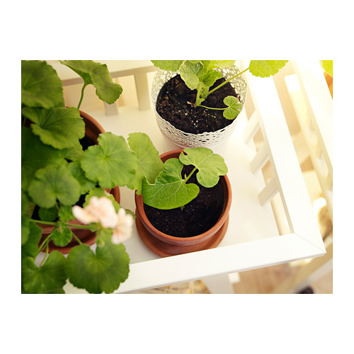 LANTLIV stand tanaman