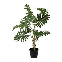 FEJKA - FEJKA, tanaman tiruan dalam pot, dalam/luar ruang philodendron, 23 cm