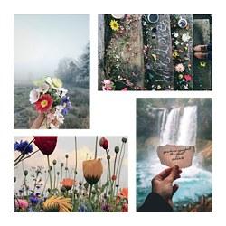 YLLEVAD - Art card, Flowers