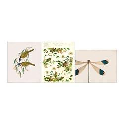 BILD - Poster, Dragonfly