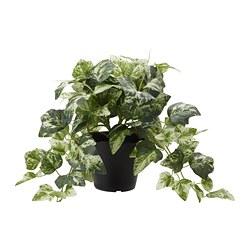 FEJKA - Tanaman tiruan dalam pot, tanaman Ivy