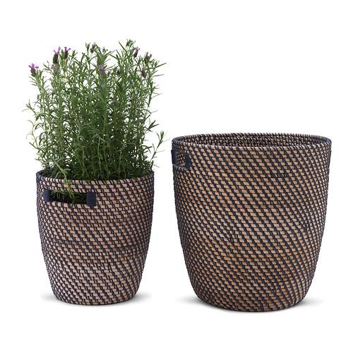 RÅGKORN pot tanaman
