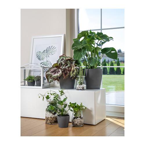 PERSILLADE plant pot