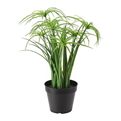 FEJKA - Artificial potted plant, in/outdoor Papyrus sedge