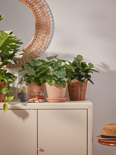 KOLBJÖRN - kabinet dalam/luar ruang, krem, 80x81 cm   IKEA Indonesia - PH177415_S4
