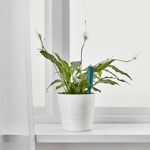 CHILIPULVER - plant watering sensor, green | IKEA Indonesia - PE695885_S4