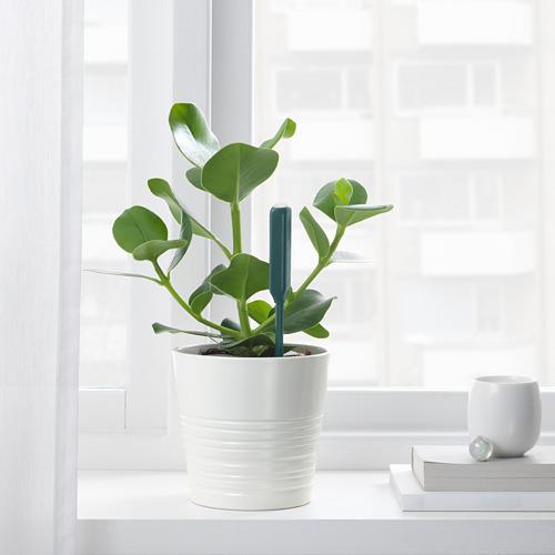 CHILIPULVER - plant watering sensor, green | IKEA Indonesia - PE717635_S4