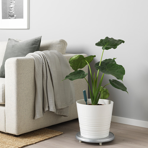 CHILIPULVER - plant watering sensor, green | IKEA Indonesia - PE717636_S4