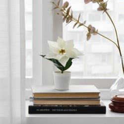 FEJKA - Tanaman tiruan dengan pot, dalam/luar ruang Poinsettia/putih