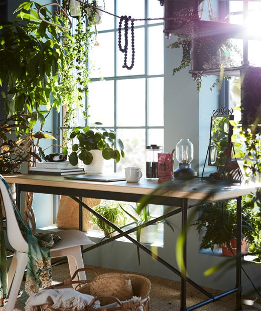 A breakfast table with lots of plants around it, both real and fake, like the FEJKA artificial potted plant.