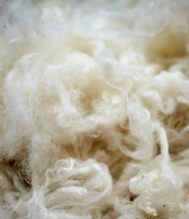 Wool is a natural, sustainable, renewable material that is often used in IKEA rugs.
