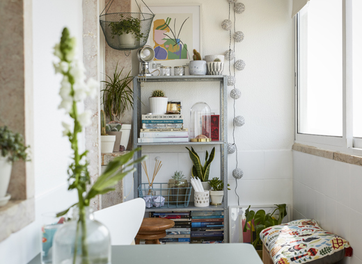 Books, plants and ornaments displayed on tall open shelving against a white wall.