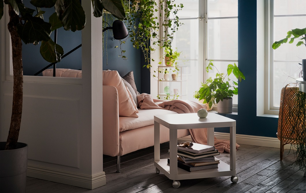 Chaise longue by sunlit, tall windows. Cushions, throw and reading lamp. Plants on the sill, hanging, and on wall shelves.