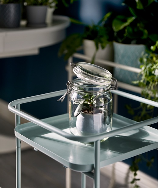 A plant stand holding a single glass jar with a small plant in a pot in; the KORKEN lid slightly ajar.