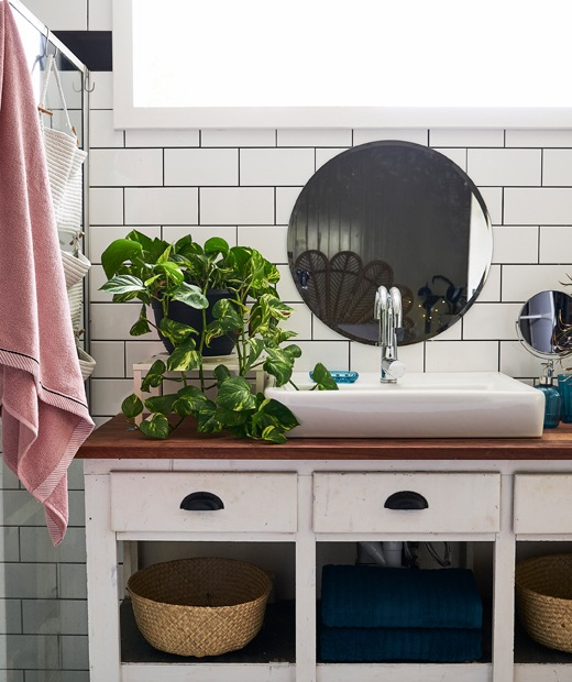 A large white sink and plant on a white vanity unit with wooden top, with a round mirror on a white tiled wall above.