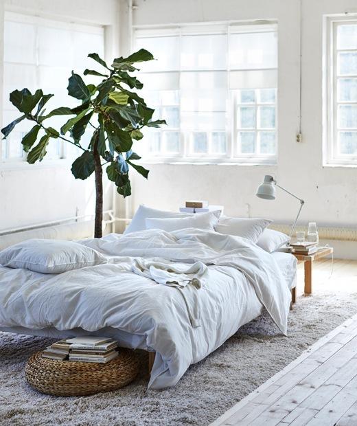 Tempat tidur rendah dengan seprai putih di atas karpet warna krem di tengah ruangan bernuansa putih.