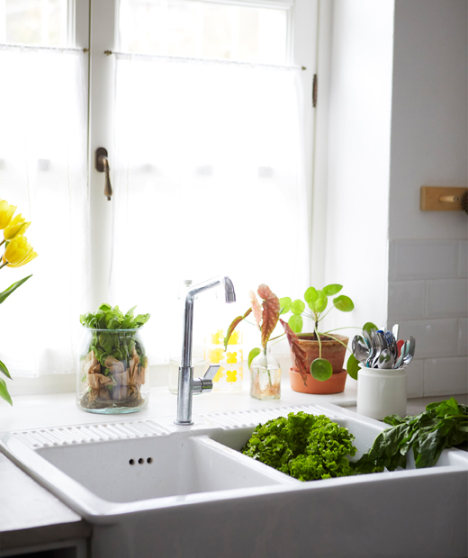 A large white double sink in front of a window with plants.