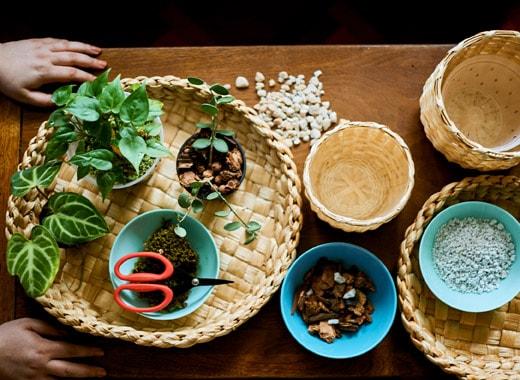 Bagian atas meja ditutupi oleh keranjang penuh batu, material alami dan juga tanaman.