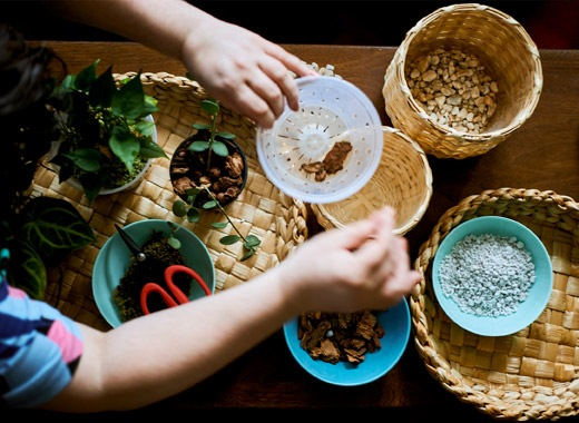 Keranjang anyaman diatas meja lengkap dengan pot berisi bahan untuk menanam dan sepasang tangan yang sedang memegang pot perawatan tanaman.