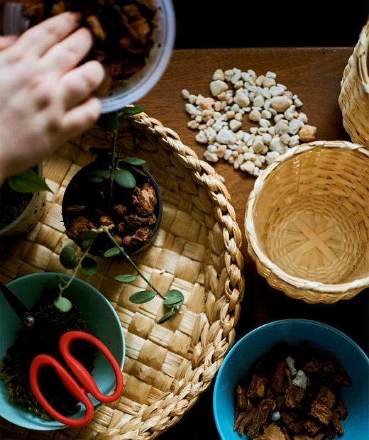 Keranjang anyaman diatas meja berisi bahan untuk menanam.
