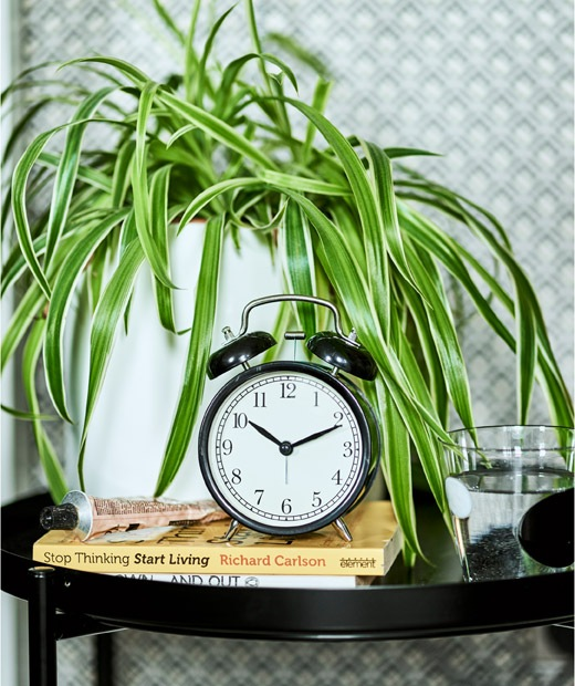 A black alarm clock on a pile of books, sitting on a black tray table with a spider plant in a white pot.