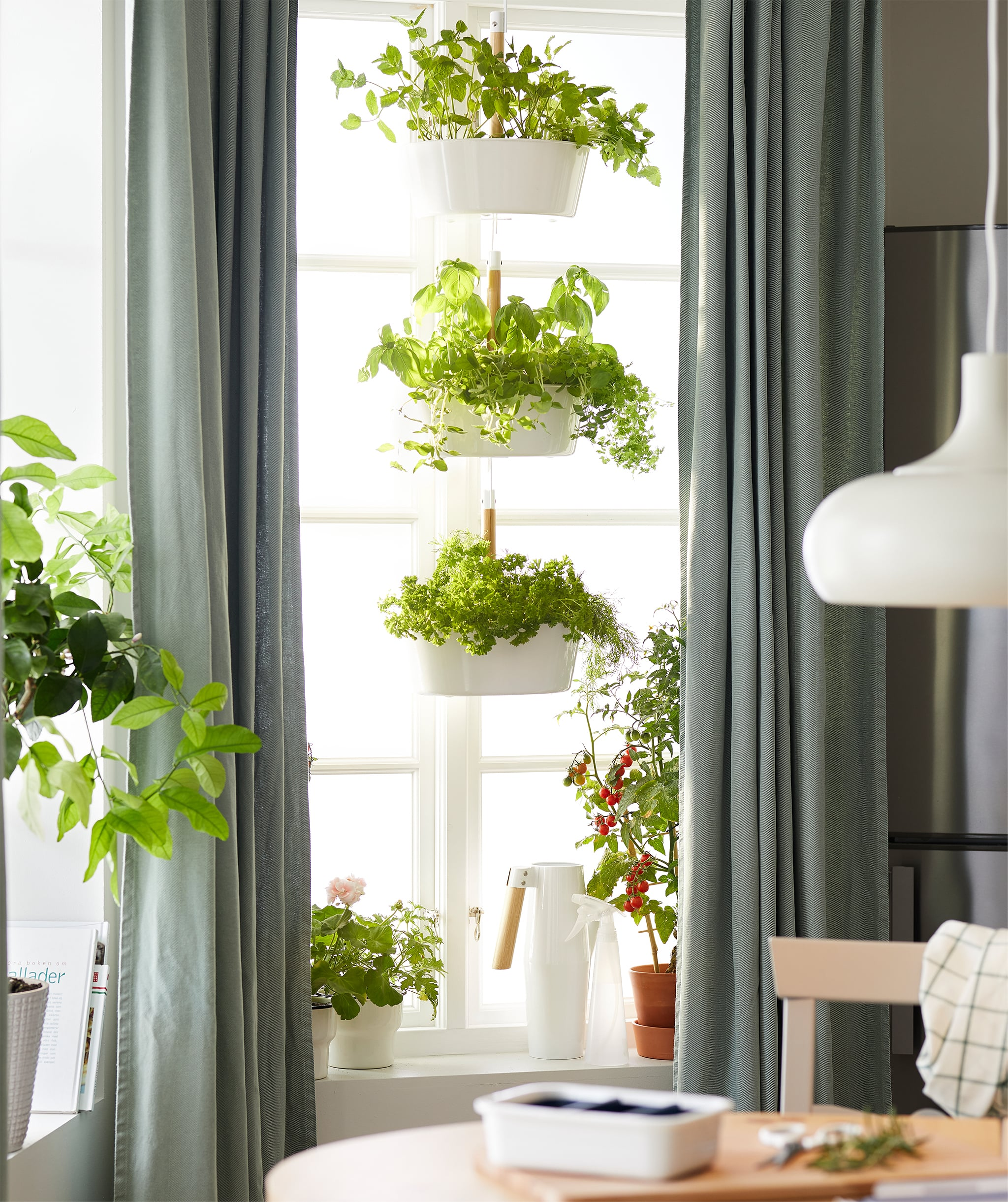 Interior dapur dengan jendela besar yang dihiasi tanaman sayur, baik di ambang jendela maupun di pot gantung tiga tingkat.