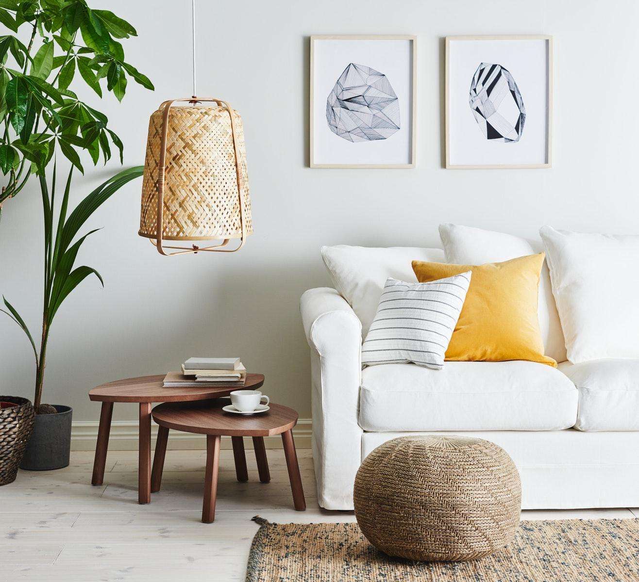 ruang tamu minimalis dengan tanaman hijau