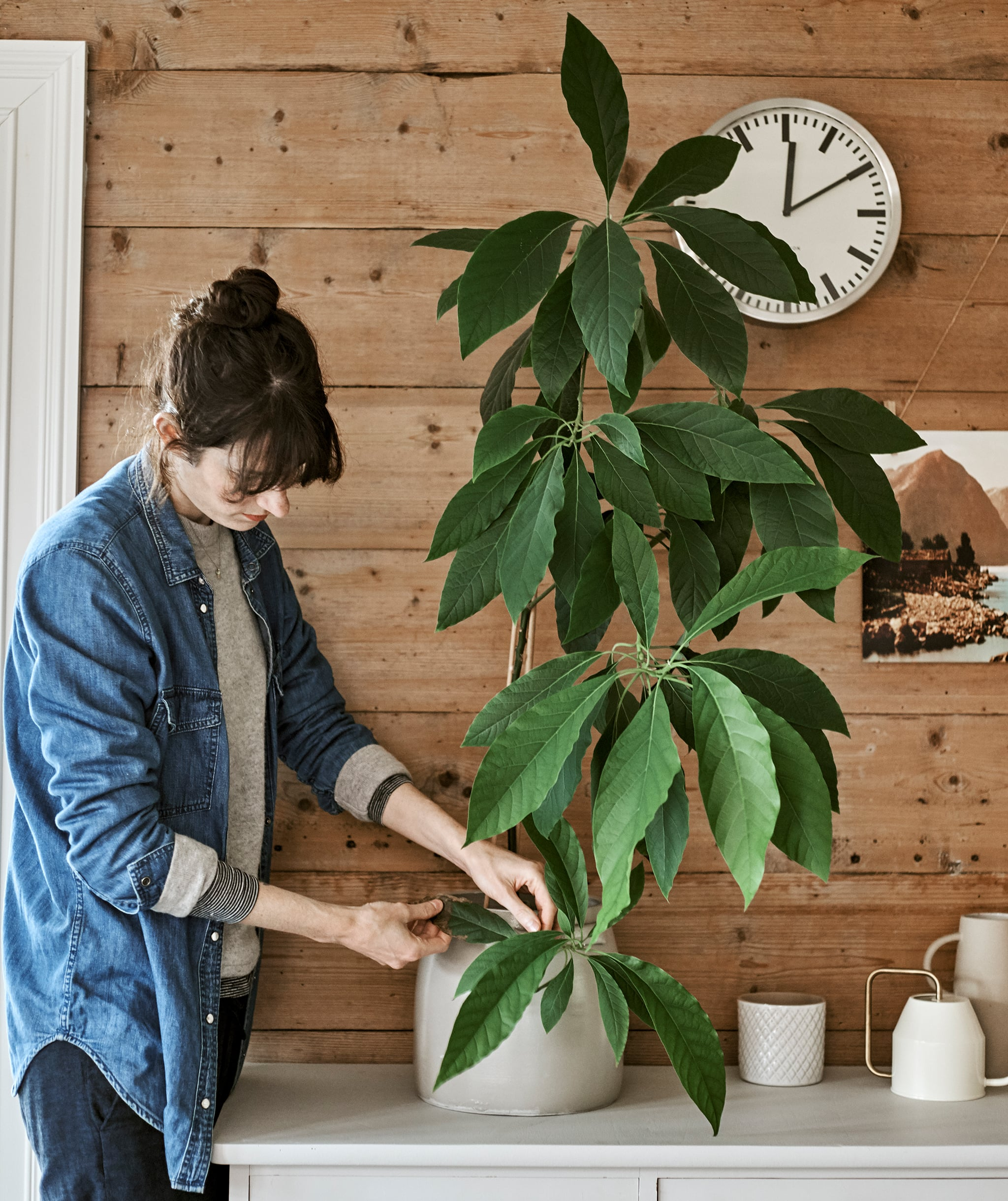 Seorang wanita mengecek daun tanaman di sebuah pot warna putih yang terletak di atas kabinet yang terletak di dinding kayu dengan sebuah jam.